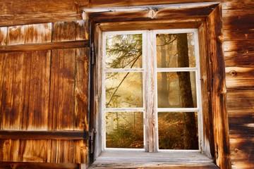 Herbstwald im Holzfenster