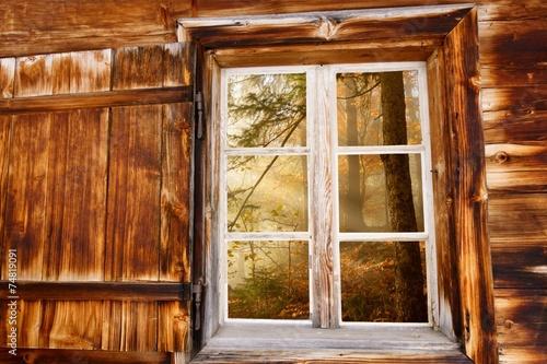 canvas print picture Herbstwald im Holzfenster