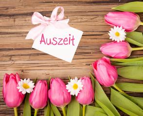 tulpen auszeit