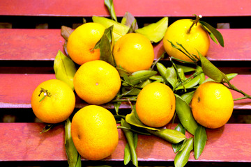 Tangerines on a bench