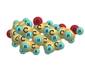Prednisone molecule isolated on white