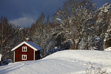 lonely cottage, winter and snowy landscape