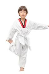 Little tae kwon do boy martial art warm up