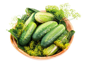 Cucumbers and dill leaves still life in wooden bowl isolated on