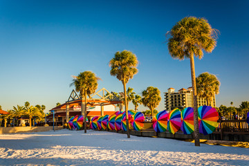 Palm trees and colorful beach umbrellas in Clearwater Beach, Flo