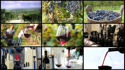 winemaking montage