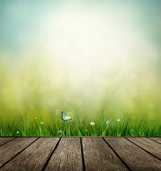 Wooden Floor, Grass, Flower And Butterfly