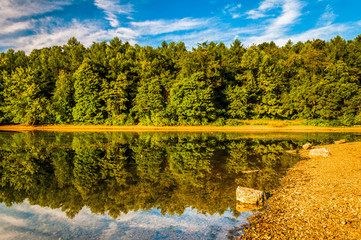 Reflections along the shore of Lake Marburg, Codorus State Park,