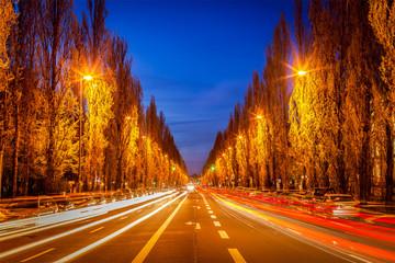 Street road in evening