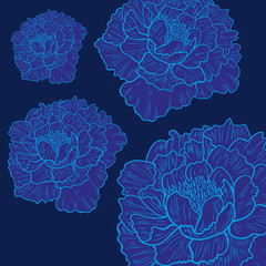 Vector background with beautiful peonies.