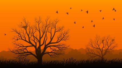 Lonely tree with birds at sunset.