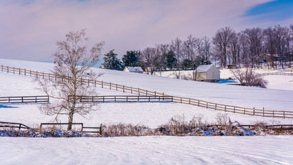 Snow covered farm fields in rural Carroll County, Maryland.