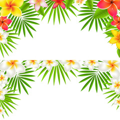 Tropical Flowers Border Set