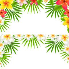 Tropical Flowers Border Set