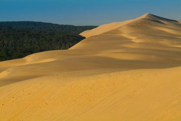 Dune du Pilat-Bassin d'Arcachon-France