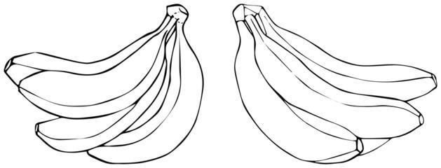 Delightful garden - Bananas