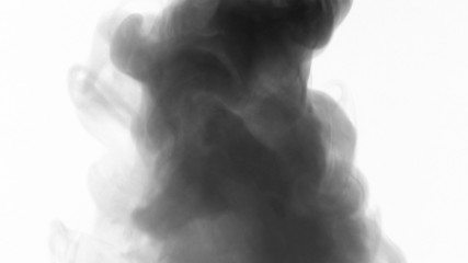 Smoke drift against white background in 3840X2160 4K UHD video.