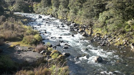 Mahuia River in Tongariro National Park New Zealand