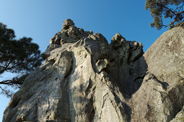 Dame Jouane sommet de la forêt de Fontainebleau