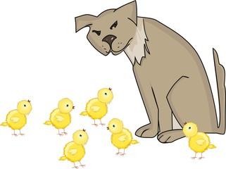 Dog and yellow chicks