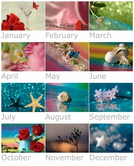 Year´s calendar with nature and flowers