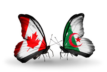 Two butterflies with flags Canada and Algeria