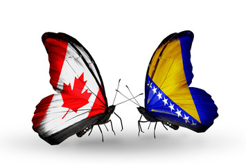 Two butterflies with flags Canada and Bosnia and Herzegovina
