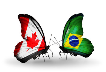 Two butterflies with flags Canada and Brazil