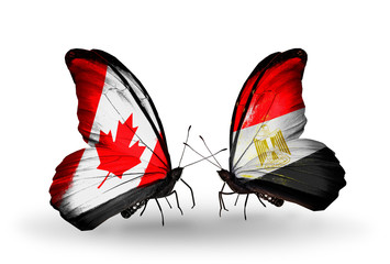Two butterflies with flags Canada and Egypt