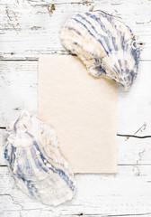 Beach card, shells frame on white wood background.