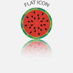 Half of watermelon in the reflection. Vector illustration