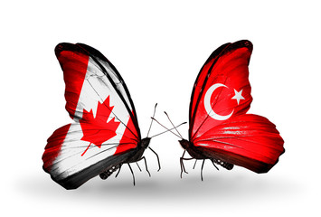 Two butterflies with flags Canada and Turkey