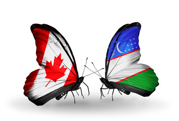 Two butterflies with flags Canada and Uzbekistan