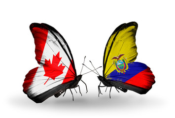 Two butterflies with flags Canada and Ecuador