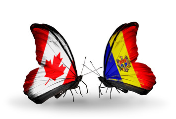Two butterflies with flags Canada and Moldova