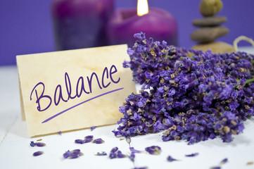 Lavendel mit Balance