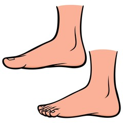 Foot Profiles