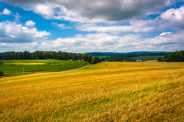 View of farm fields and rolling hills in rural Carroll County, M