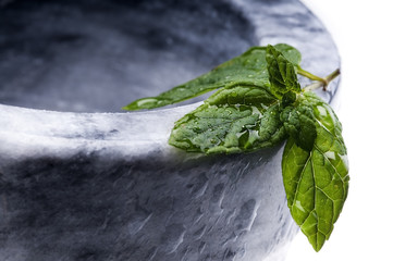 a mint leaf wet with dew selective focus
