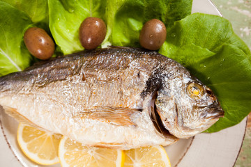 Fish (Sparus aurata) freshly cooked and served