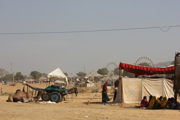 Camel parked in Pushkar, with a carriage and the ferris wheel