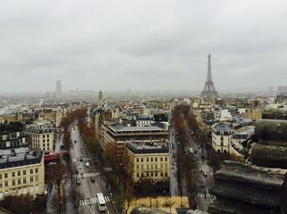 Rainy Parisian Afternoon