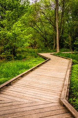 Boardwalk trail through the forest at Wildwood Park in Harrisbur
