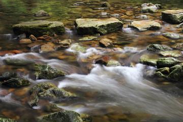 赤目四十八滝渓谷 渓流