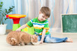 child boy feeding red cat