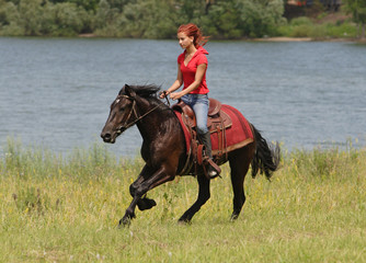Karachai-Tscherkessien - best breed of horse for trail riding
