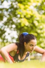 Fit determined brunette doing push ups