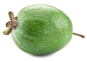 Feijoa fruit isolated on a white background.