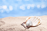 Shell with a pearl.