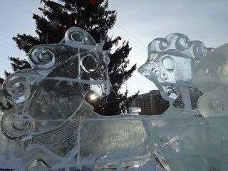 ice sculptures of horses near spruce